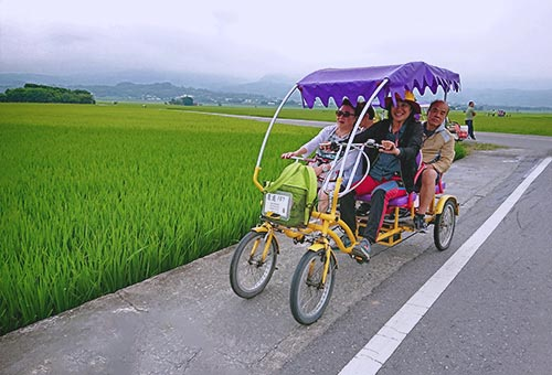 Cycling to Explore Chihshang Rice Fields