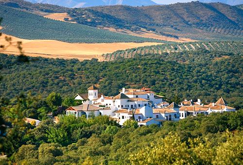 Enjoy the amazing five-star hotel, Barcelo La Bobadilla