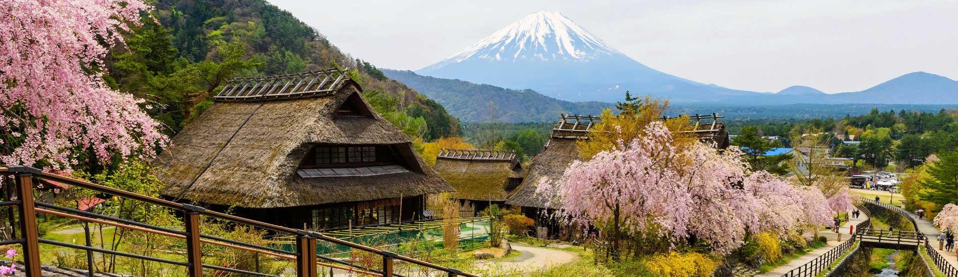 Iyashi No Sato Healing Village