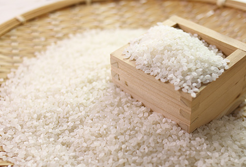 Best Rice In The World – Koshihikari