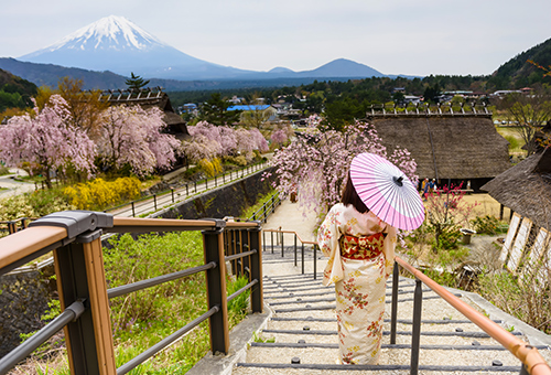 View Fuji from the Healing Village