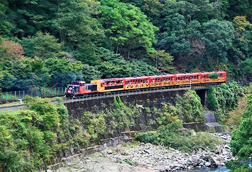 Enjoy Arashiyama's fantastic view on train
