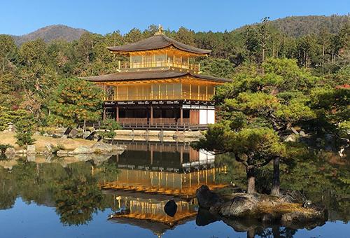 See Golden Pavilion glitter under sunlight
