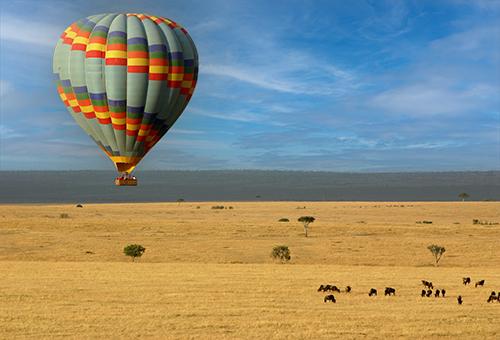 Air Balloon Safari