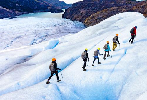 Grey Glacier Hike